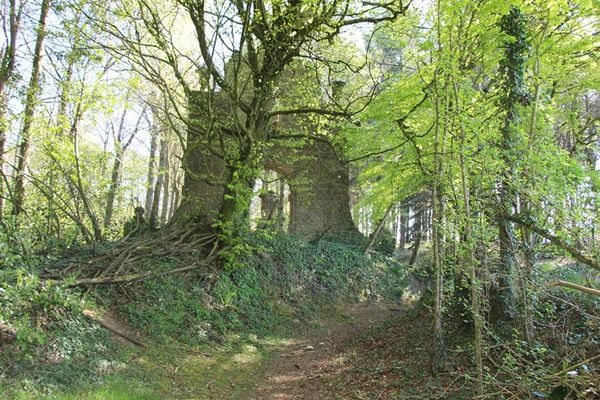 Ruines de Caradeuc