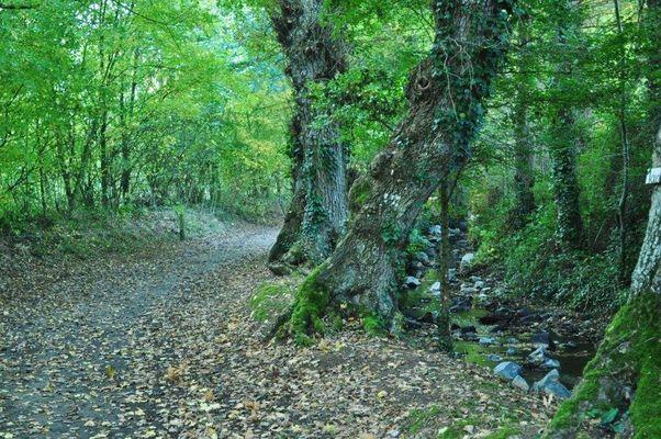 Randonnée pleumeleuc Vaunoise ©Sentiers de la vaunoise (3)