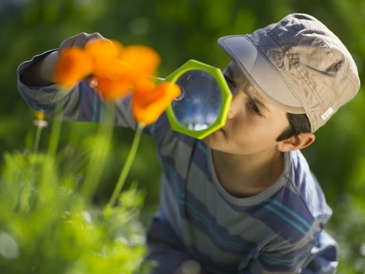 Enfant observant la nature avec une loupe