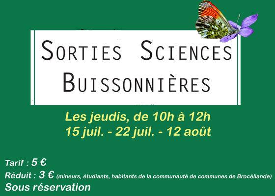 sciences buissonnières_Paimpont
