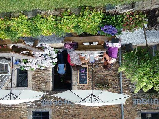 Les hortensias du haut bois - salon de thé - Taupont - Bretagne