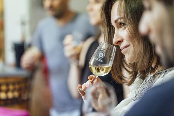 Dégustation de vin durant la visite du vignoble en combi