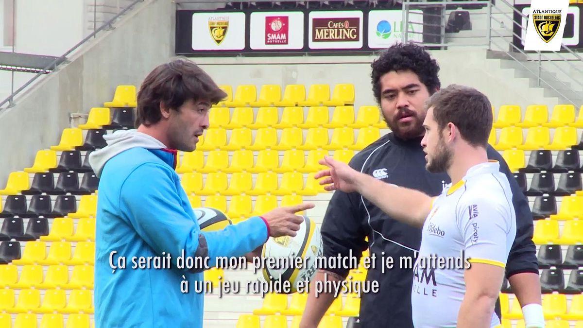 Avant-match : Stade Toulousain / Stade Rochelais