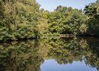 Miroir-aux-fees-Trehorenteuc-Destination-Broceliande-Bretagne