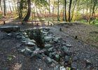 fontaine de barenton - randonnée contée