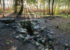Fontaine de Barenton