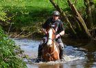 randonnées équestres - Brocéliande - Loyat