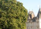chateau-de-profil-copier-1012847