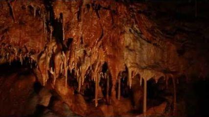 Grotte du Bosc - Midi Quercy Gorges de l'Aveyron