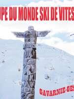 Championnats de France et coupe du monde de ski de vitesse