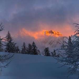Sortie découverte du trail sur neige