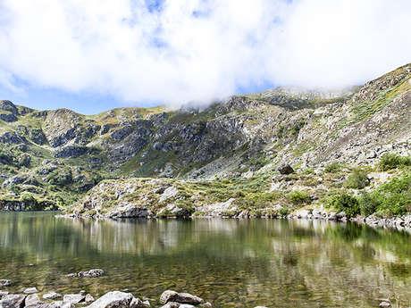 L'étang d'Artax