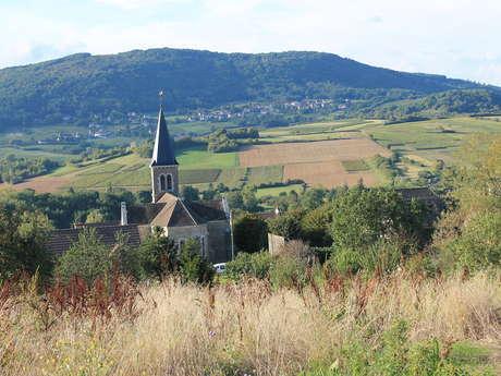 Hiking in Saint Denis de Vaux