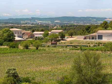 Wine Tasting - Domaine Villepeyroux-Forest Vineyard & Winery
