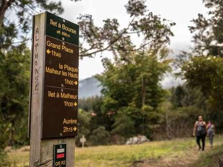 Zarlor Guided hike - The Ilet à Bourse Experience