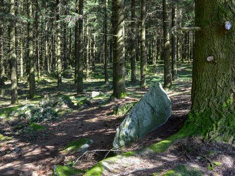 Circuit Trail n°5 : les rochers de Chabrières