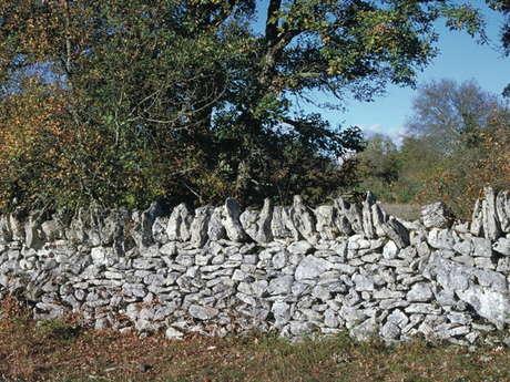 Entre géologie et préhistoire