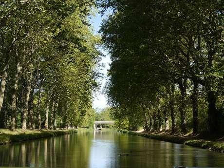 Canal du Midi: Carcassonne-Trèbes