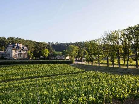 Dégustation de 6 vins - Visite de l'Expert - Domaine de Baronarques