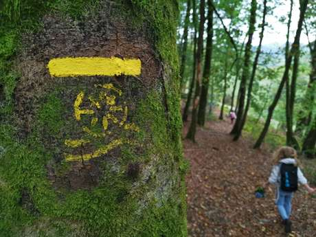 Circuit pédestre N°56 Sentier de découverte des cascades d'Augerolles
