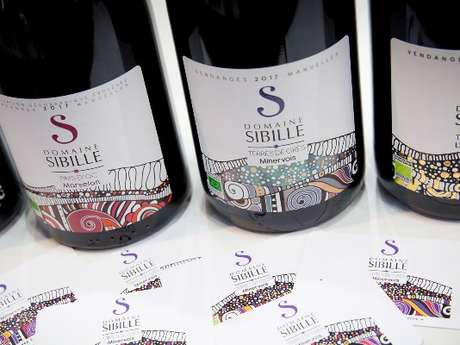 Tasting of 9 wines - Domaine Sibille Vineyard & Winery