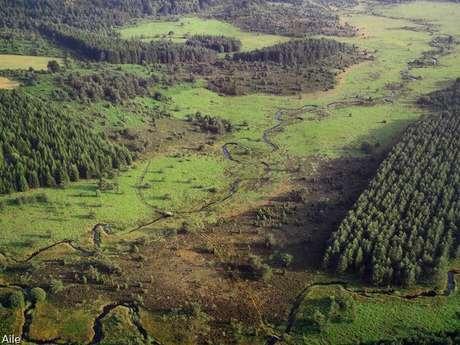 Sentier de découverte des landes et tourbières de la Mazure : Grande boucle