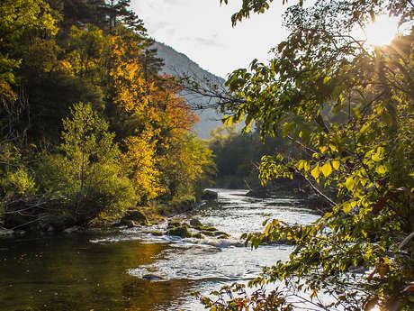 Mont Aigoual, de Causses en Gorges (2)