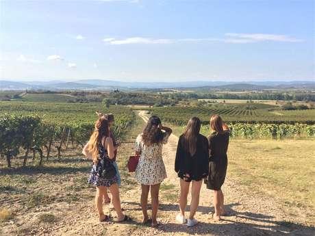 Excursión privada en minibús - 1/2 día - Visita de 2 viñedos y cata de vinos - F / GB - Trésor Languedoc Tours