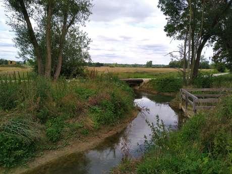 Site d'observation de la nature de Davrey