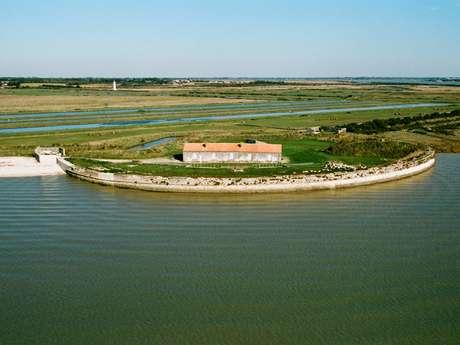 Parcours 12 - Le Fort Lapointe ou le Marais de la Cabane 10 km - 1 h 30