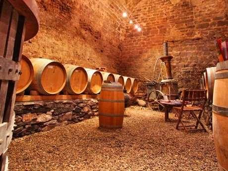 Tasting of 6 wines - Château du Donjon Vineyard & Winery