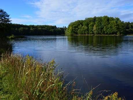 Circuit Pédestre N°11 L'étang du Moulin du Donzeil