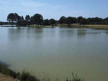 L'étang du Montet