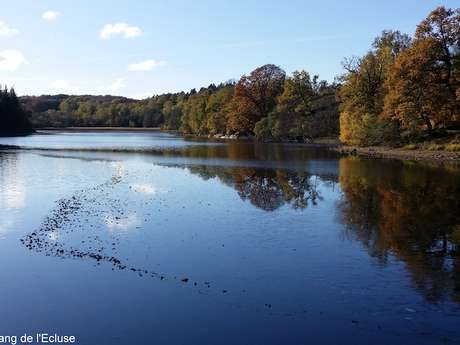 Circuit de randonnée : autour des étangs