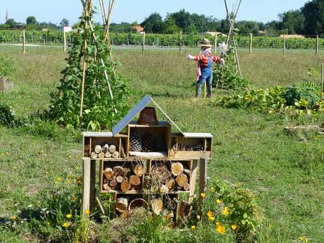 Rendez-vous Jardin: La permaculture pour débutant