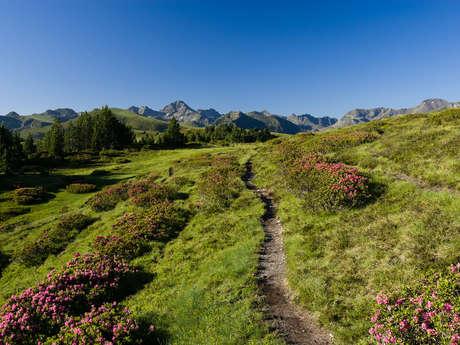 Caminata en altura en Beille-Piparlan