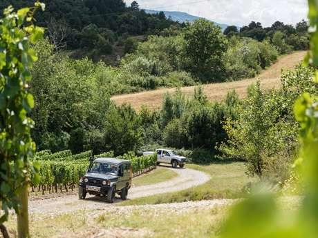Tasting of 4 wines + Visit - Tasting at the top- Domaine Baronarques Vineyard