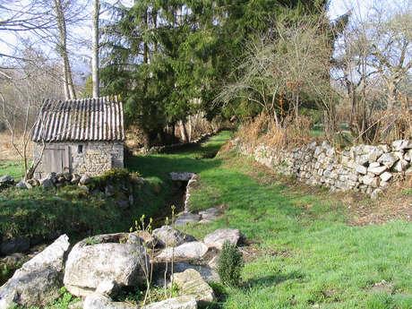 Circuit de randonnée pédestre N°28 Château de Beaumont