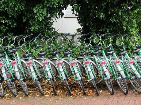 Location de vélos et voitures - Montmorillon