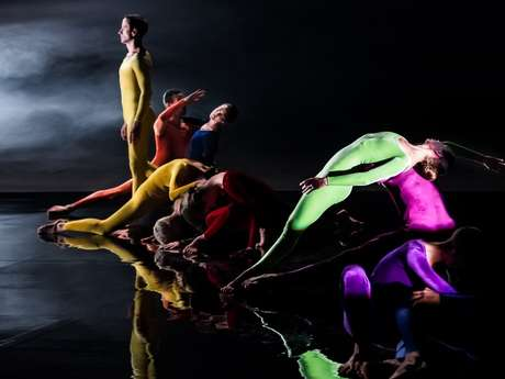 Nuit de la danse - Cunningham