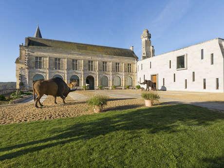 MUSEE DE LA PRÉHISTOIRE DU GRAND-PRESSIGNY