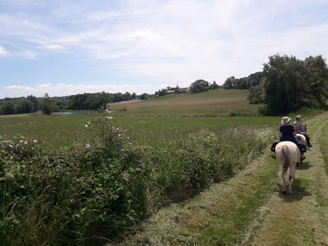 En Quercy Blanc - 5 jours à cheval
