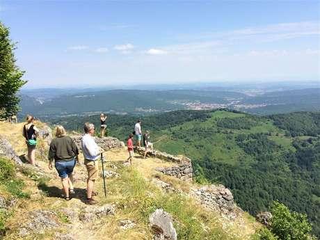 Excursion en minibus privatisé - Journée - Châteaux de Montségur, Mirepoix et Foix - F/GB