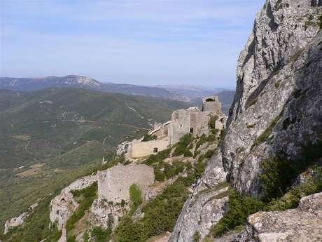 Excursion partagée en minibus - Journée - Châteaux de Quéribus & Peyrepertuse + village de Cucugnan - F/GB - Trésor Languedoc Tours