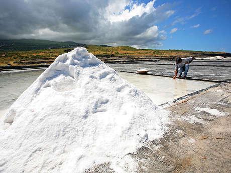 Zarlor guided hike along the Zabitan Trail - From salt to sugar
