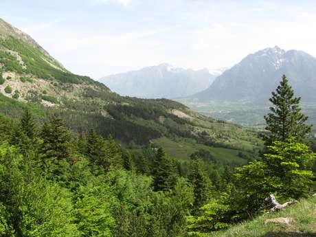 Sentier botanique Dominique Villars