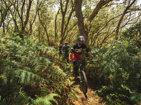 Zarlor Bike adventure