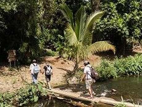 Zarlor Balade guidée botanique - Ravine Saint-Gilles