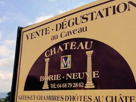 Tasting of 3 wines - Château Borie Neuve
