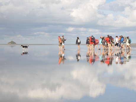 Avec des Guides Natures : les traversées de la Baie
